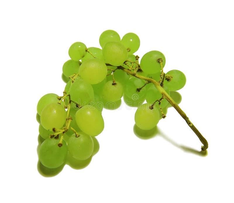 Ramo das uvas verdes isoladas em um fundo branco imagens de stock royalty free