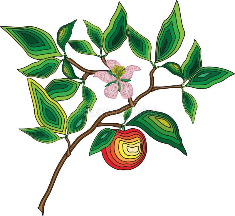 Ramo de árvore de Apple com folhas, maçã e flor foto de stock