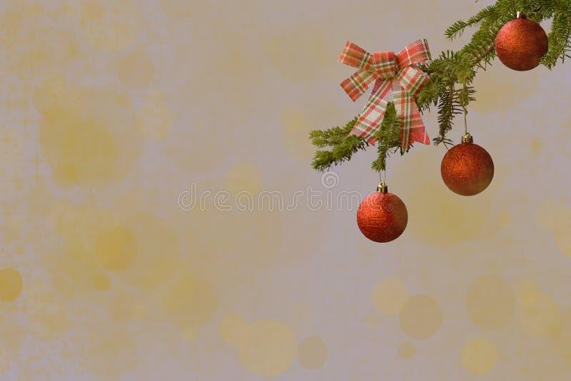 Ramo de árvore do abeto com a bola vermelha do brilho e fita verificada no fundo claro Efeitos de Bokeh Cart?o dos cumprimentos d imagem de stock royalty free