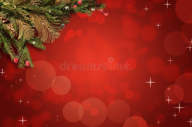 Ramo de árvore do Natal em um fundo vermelho brilhante ilustração do vetor