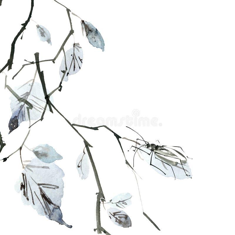 Ramo de árvore do vidoeiro com inseto ilustração stock