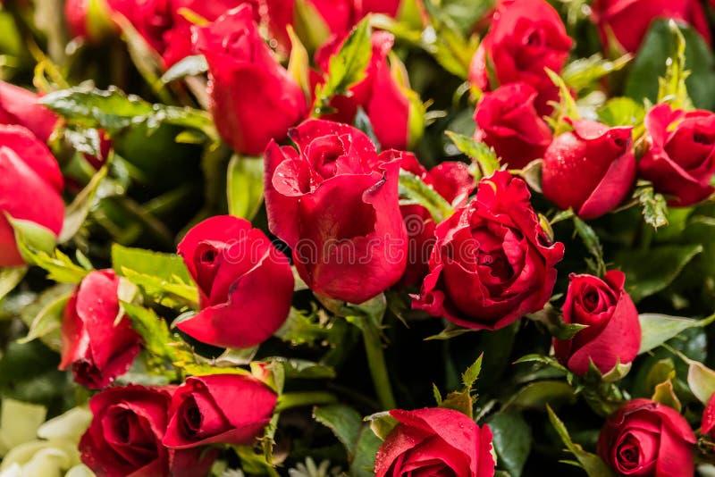 Ramo de centros de flores para la decoración fotos de archivo libres de regalías