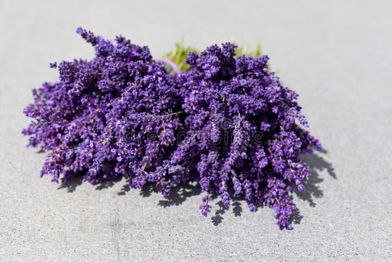 Ramo de dos flores de la lavanda en la tabla imagen de archivo