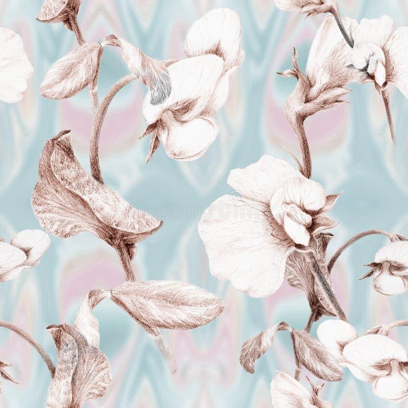 Ramo de ervilhas de florescência Papel de parede abstrato com motivos florais Teste padrão sem emenda wallpaper fotografia de stock