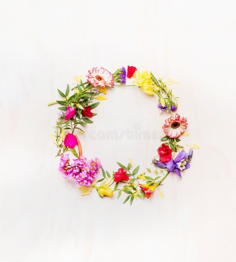 Ramo de flores coloridas de la primavera fresca, alineado todos alrededor, espacio para el texto, fondo blanco, espacio para el t imágenes de archivo libres de regalías