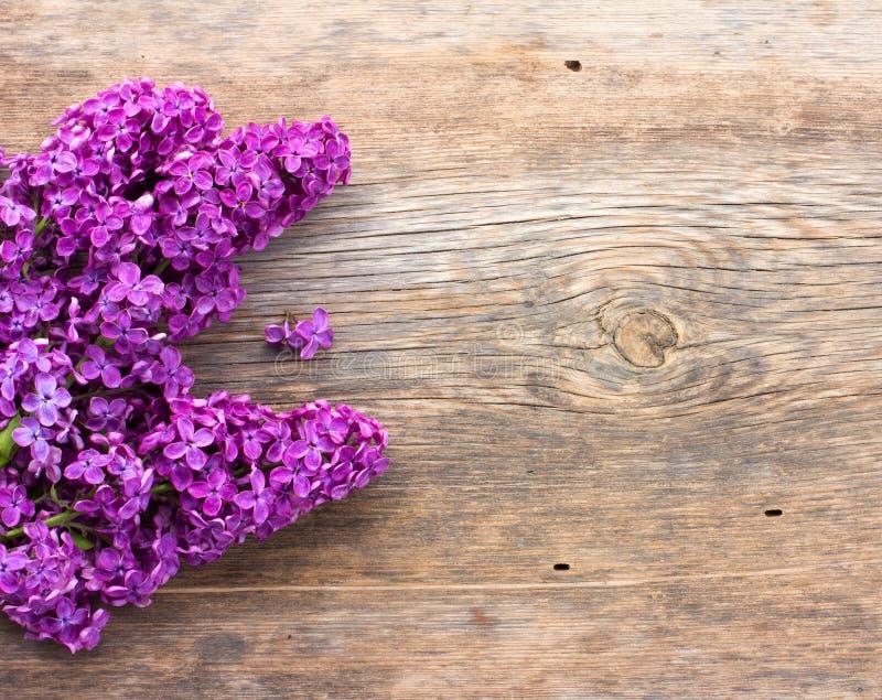 Ramo de flores de la púrpura de la lila imagenes de archivo