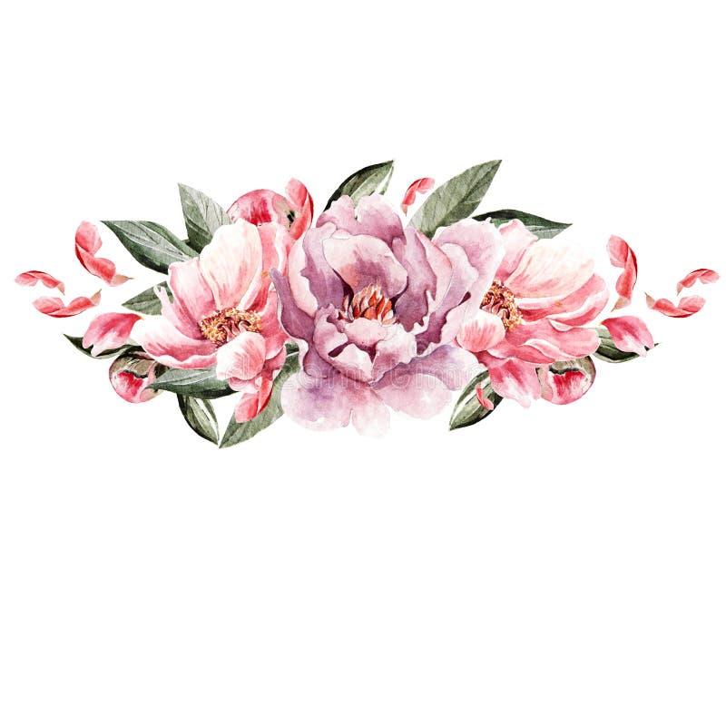 Ramo de flores de la peonía watercolor libre illustration