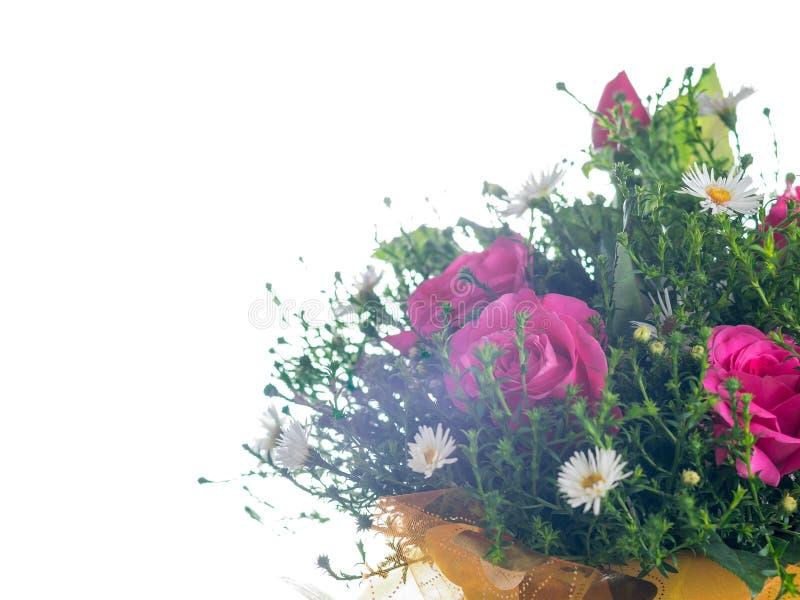 Ramo de flores en la luz brillante aislada en el fondo blanco imagen de archivo