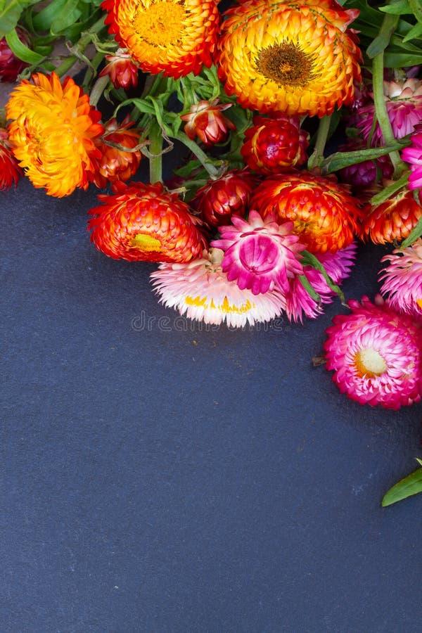 Download Ramo de flores eternas imagen de archivo. Imagen de brillante - 42443043