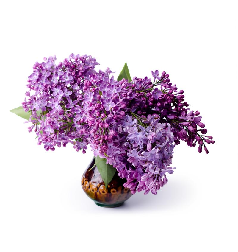 Ramo de flores frescas hermosas de la lila Flores blancas y p?rpuras de la lila en florero imagen de archivo libre de regalías
