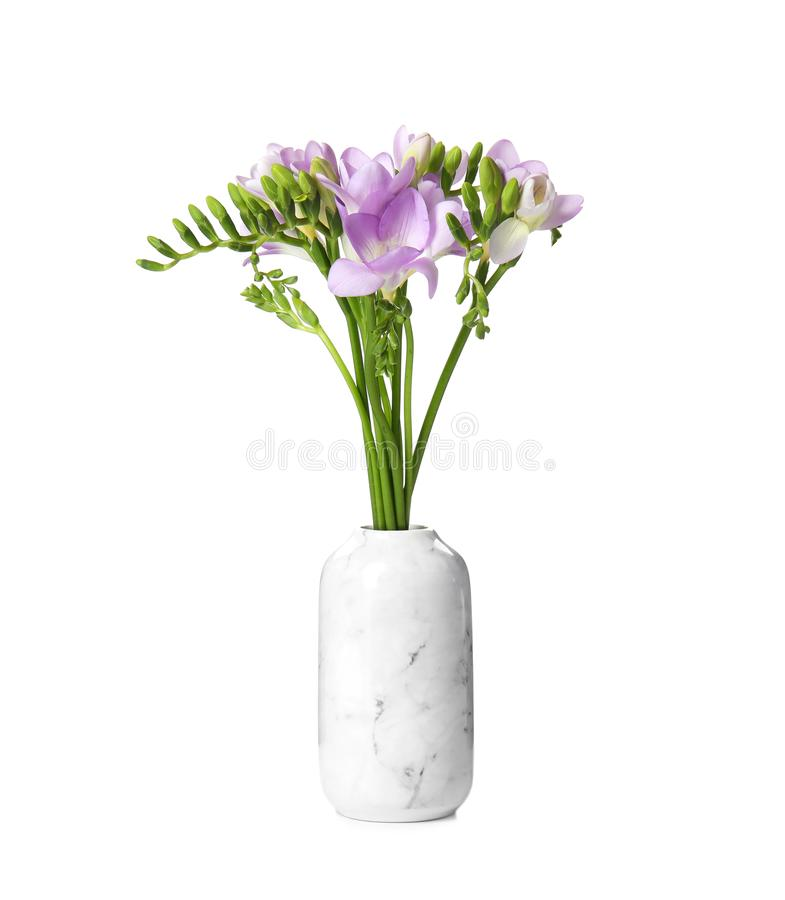 Ramo de flores frescas de la fresia en el florero aislado foto de archivo libre de regalías