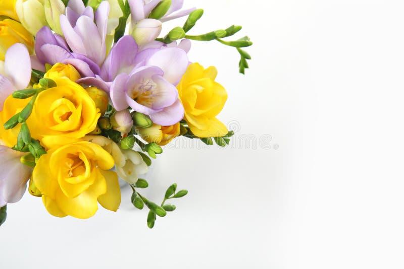 Ramo de flores frescas de la fresia en la visi?n blanca, superior foto de archivo libre de regalías