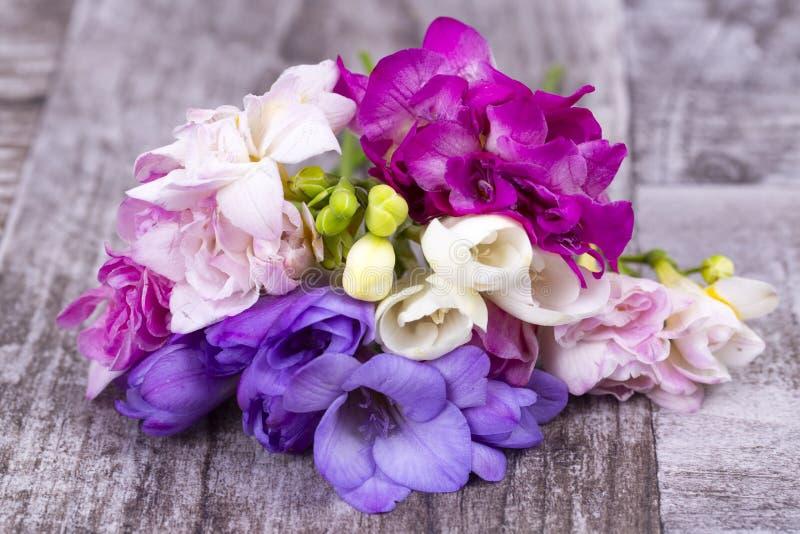 Ramo de flores frescas de la fresia de la primavera herbarias imagen de archivo libre de regalías