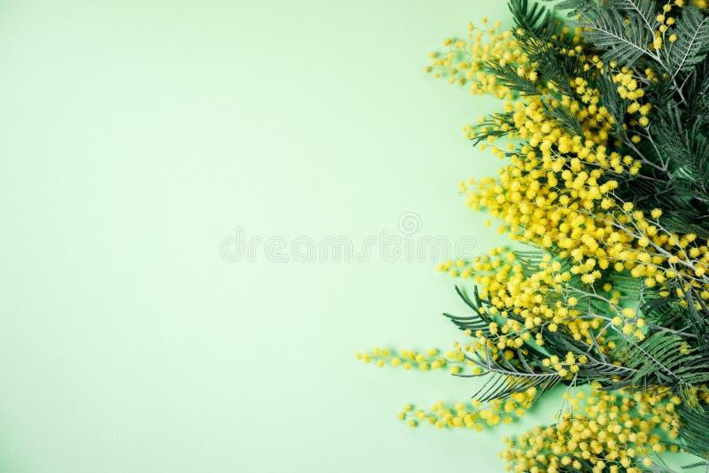 Ramo de flores de la mimosa en fondo verde Wom internacional imagen de archivo