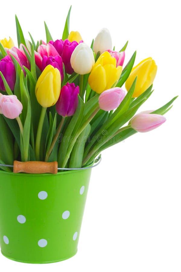 Ramo de flores de los tulipanes imagen de archivo