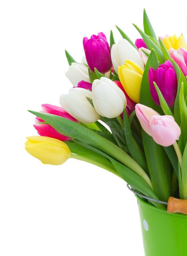 Ramo de flores de los tulipanes imagenes de archivo