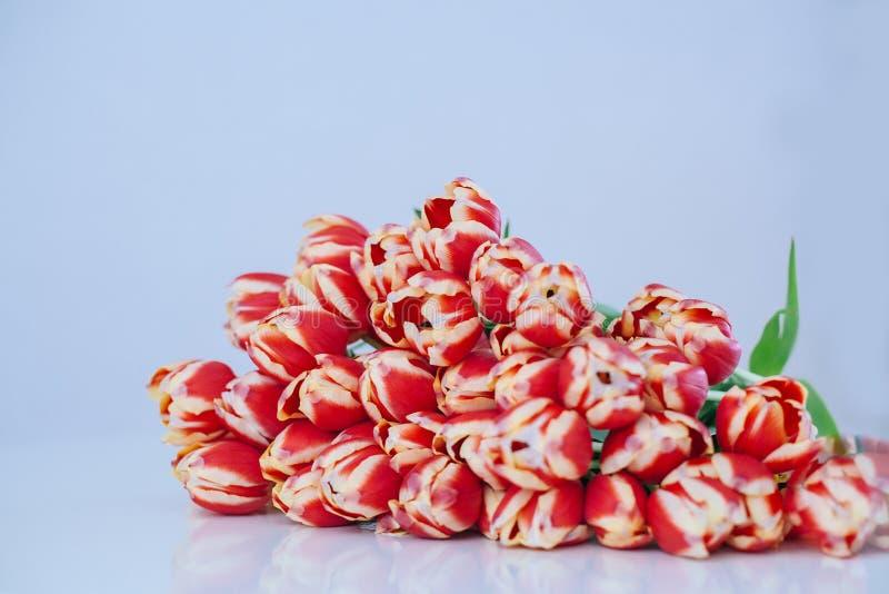 Ramo de flores multicoloras de los tulipanes de la primavera en frente en la tabla blanca fotos de archivo libres de regalías