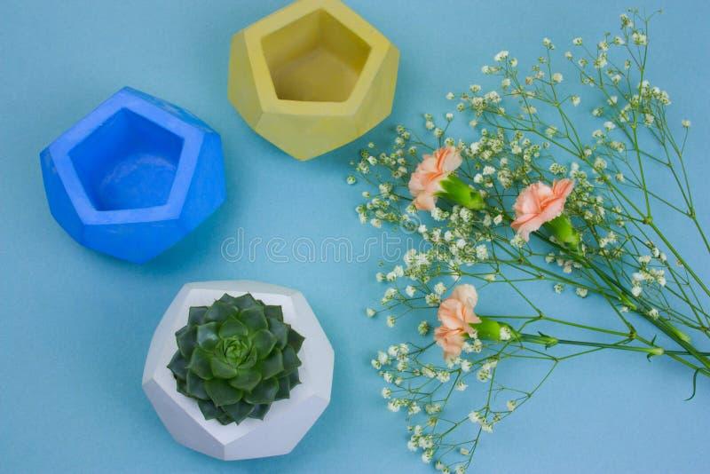 ramo de flores, de potes suculentos y concretos en conserva fotografía de archivo libre de regalías
