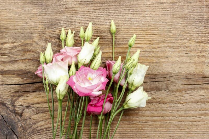 Ramo de flores rosadas del eustoma fotografía de archivo libre de regalías