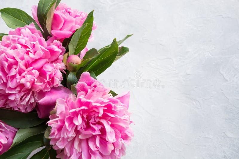 Ramo de flores rosadas de la peonía como marco Copie el espacio para el texto Visi?n superior Endecha plana imagen de archivo
