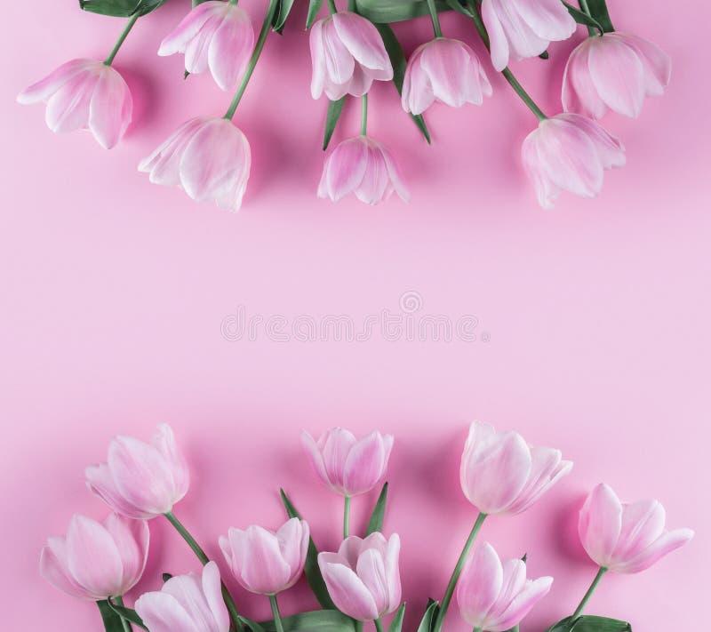 Ramo de flores rosadas de los tulipanes en fondo rosado Para primavera que espera Tarjeta para el día de madres, el 8 de marzo, P imagen de archivo libre de regalías