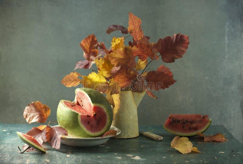 Ramo de hojas y de sandía imagen de archivo