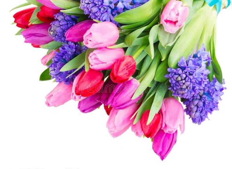 Ramo de jacinto y de tulipanes azules fotografía de archivo libre de regalías
