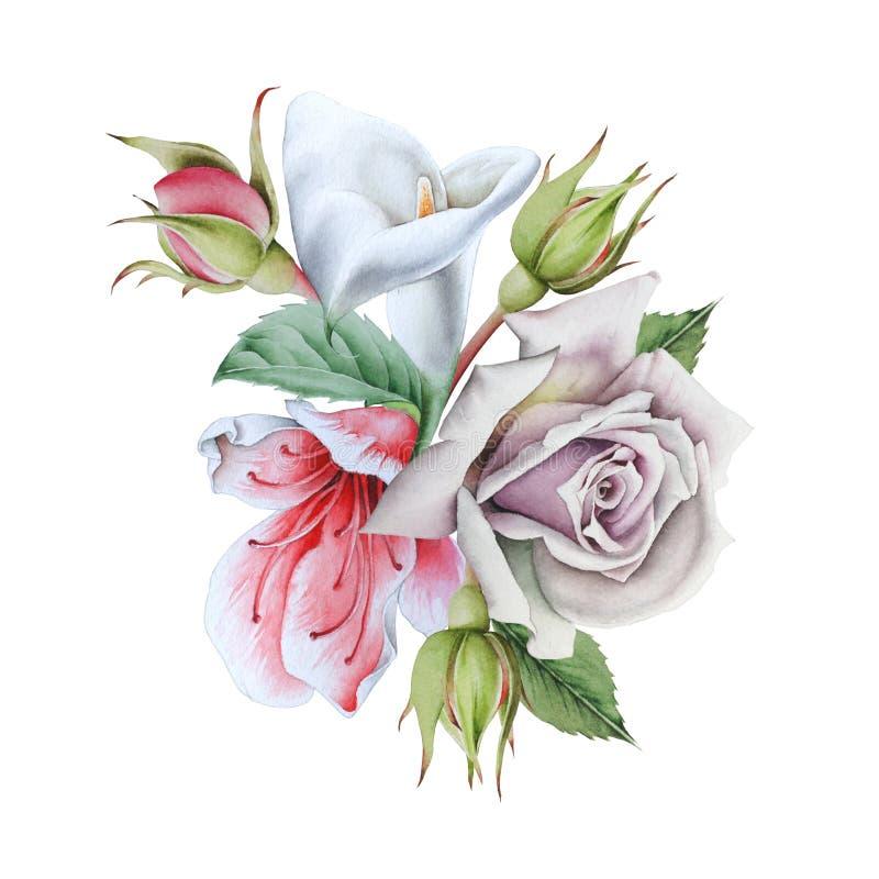 Ramo de la acuarela con las flores calla Rose Ilustraci?n fotos de archivo