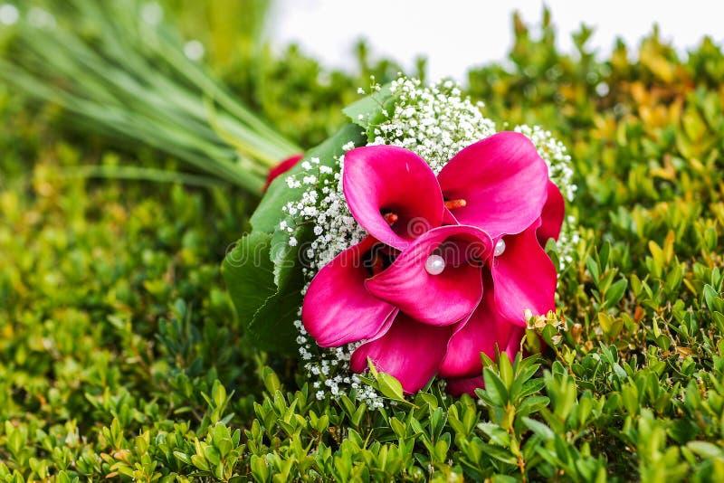Ramo de la boda de calas rosadas que mienten en hierba fotos de archivo libres de regalías