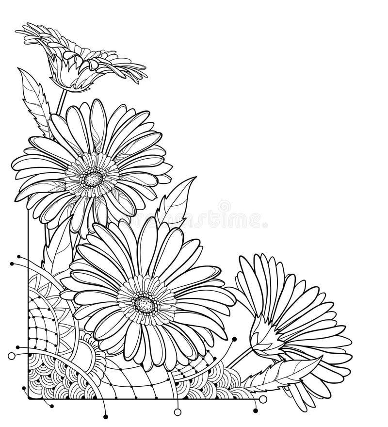 Ramo de la esquina del vector con la flor del Gerbera o de Gerber del esquema en negro aislada en el fondo blanco Manojo de Gerbe ilustración del vector