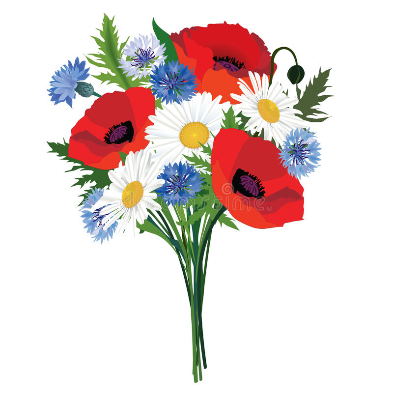 Ramo de la flor. ilustración del vector