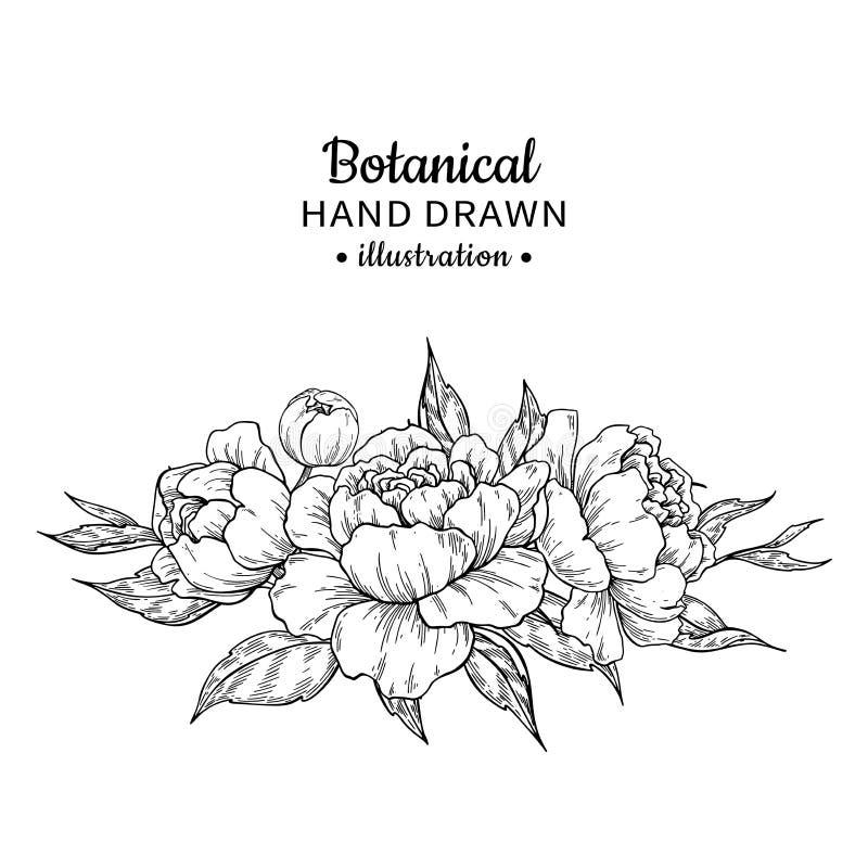 Ramo de la flor del vintage Gráfico del vector Peonía, rosa, hojas y libre illustration