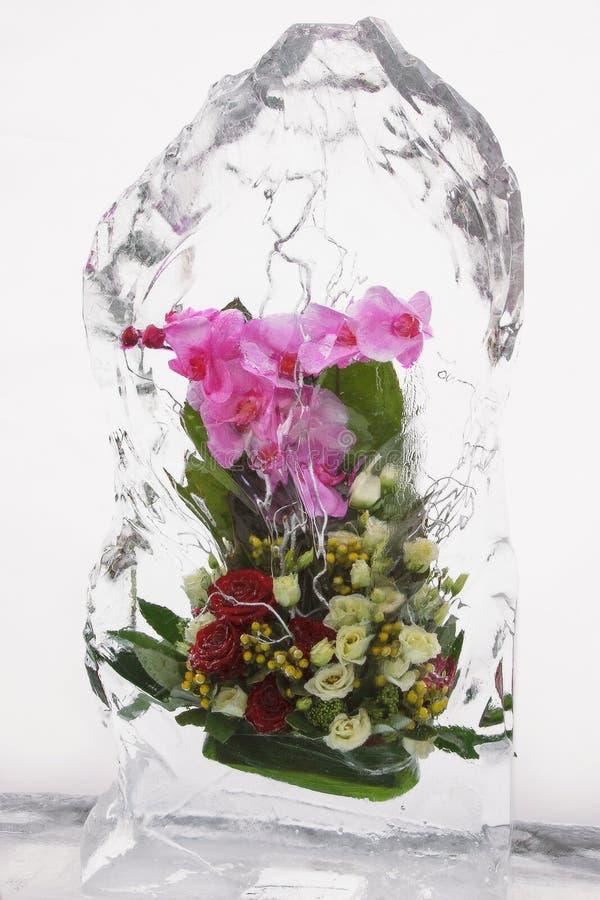 Ramo de la flor en el hielo IV imágenes de archivo libres de regalías