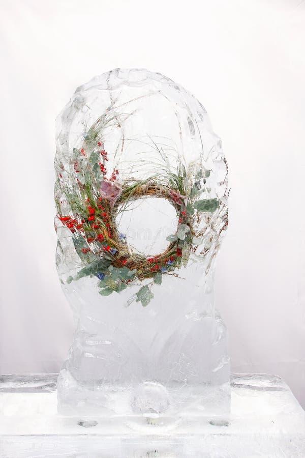 Ramo de la flor en el hielo VI foto de archivo libre de regalías
