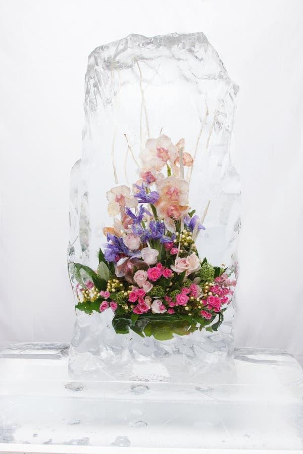 Ramo de la flor en el hielo VII foto de archivo libre de regalías