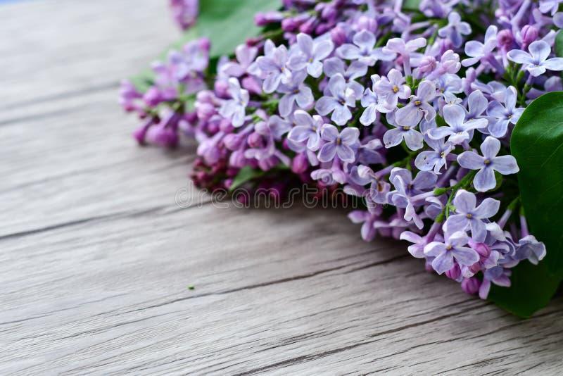 Ramo de la flor de la lila en fondo de madera imágenes de archivo libres de regalías