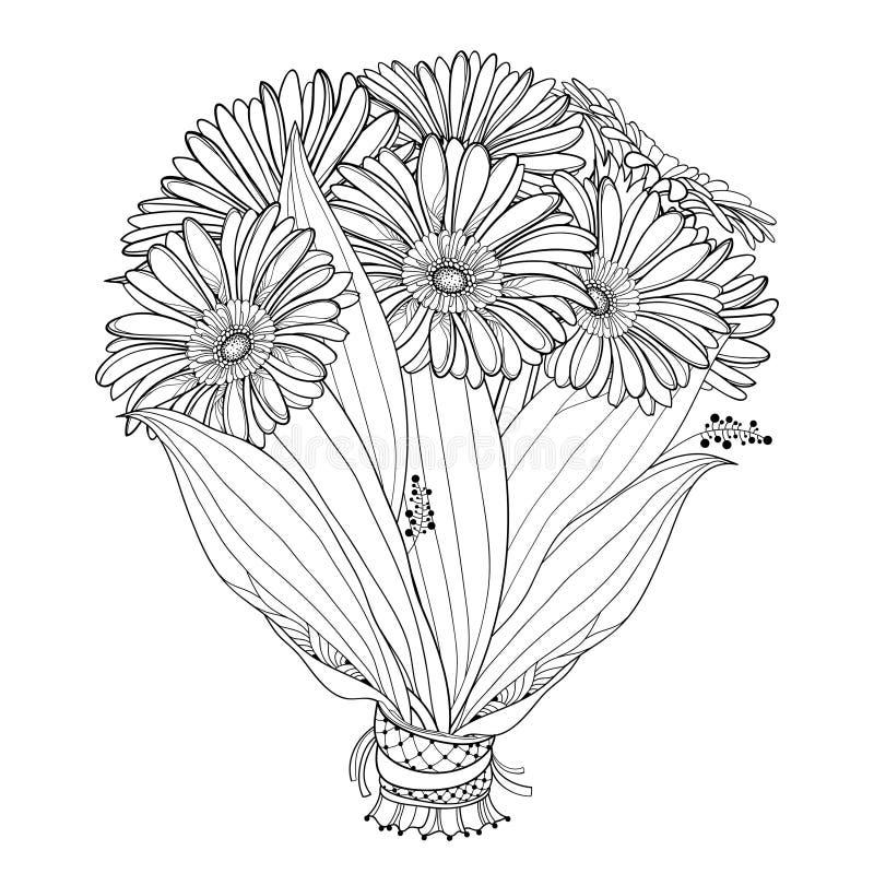 Ramo de la novia del vector de Gerbera del esquema o flor y hoja de Gerber en negro aislada en el fondo blanco Manojo de Gerbera  ilustración del vector