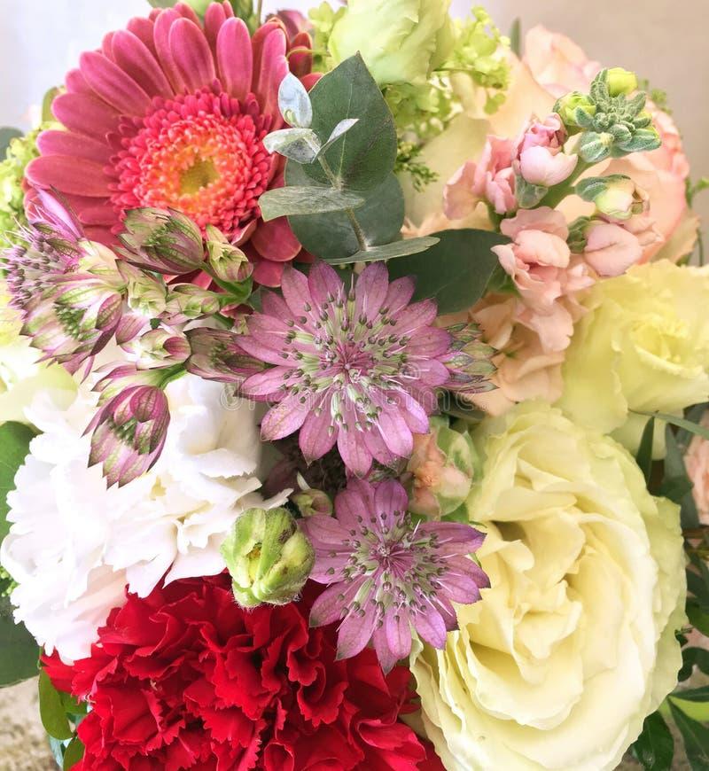 Ramo de la primavera de flores coloridas mezcladas Ramo de las flores incluyendo gerbera, Astrantia, blanco y el clavel rojo Bril imágenes de archivo libres de regalías