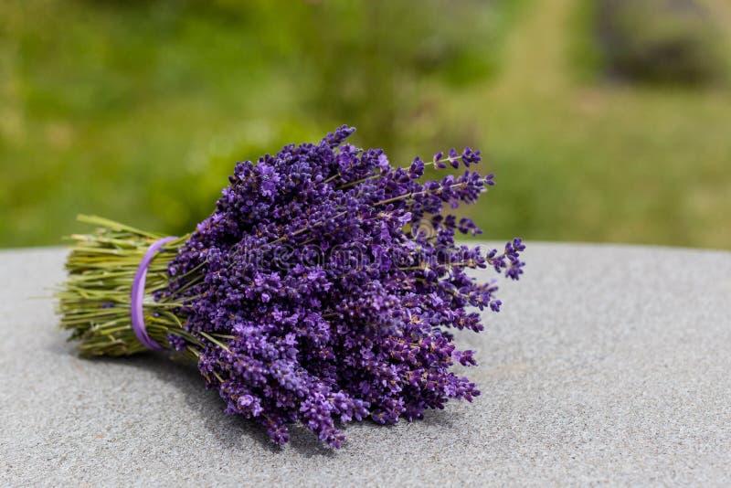 Ramo de las flores de la lavanda en la tabla imagen de archivo