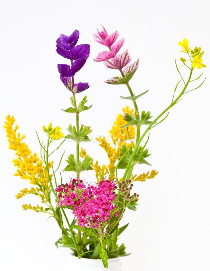 Ramo de las flores salvajes imagenes de archivo