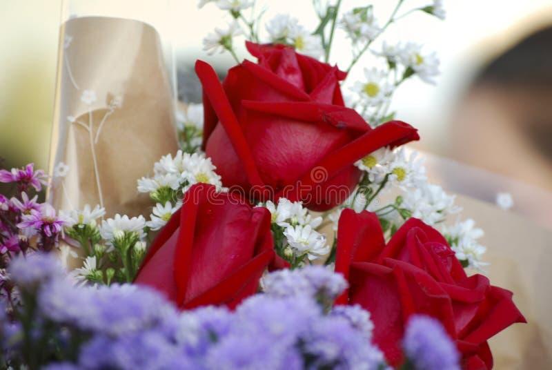 Ramo de las rosas rojas del foco selectivo para los recienes licenciados el día de graduación fotografía de archivo