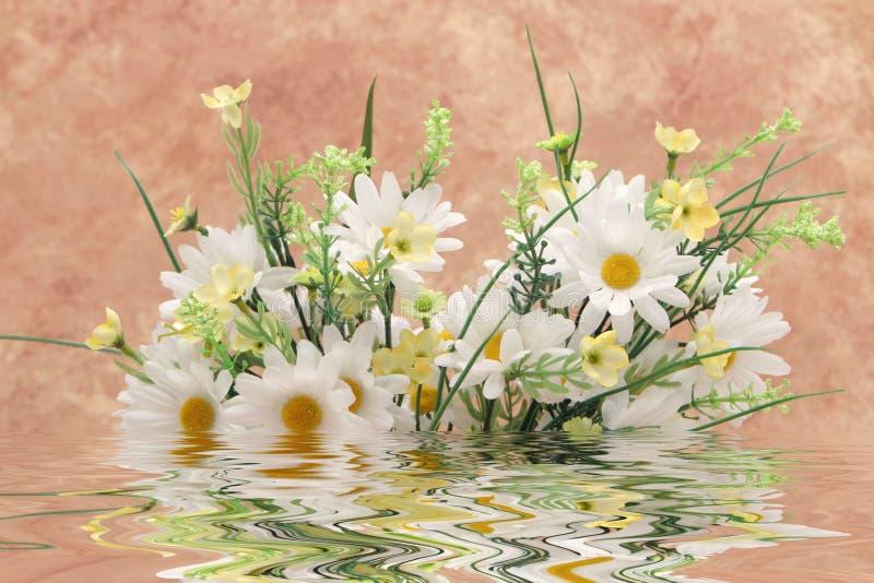 Ramo de margaritas blancas en agua fotografía de archivo