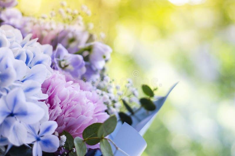 Ramo de primer de las flores Peonías, hortensia imagenes de archivo
