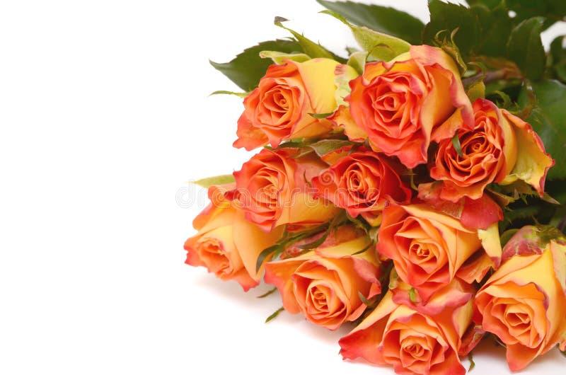 Ramo de rosas amarillas aisladas en blanco foto de archivo