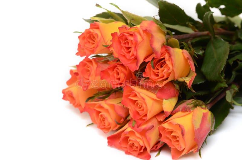 Ramo de rosas amarillas en blanco imágenes de archivo libres de regalías