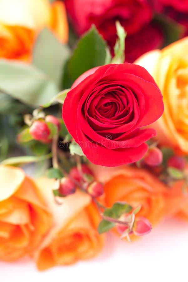 Ramo de rosas coloridas fotos de archivo