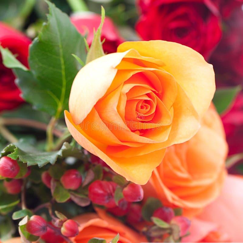 Ramo de rosas coloridas imágenes de archivo libres de regalías