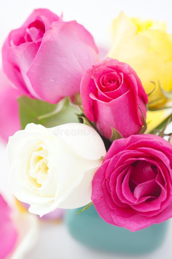 Ramo de rosas coloridas fotografía de archivo libre de regalías