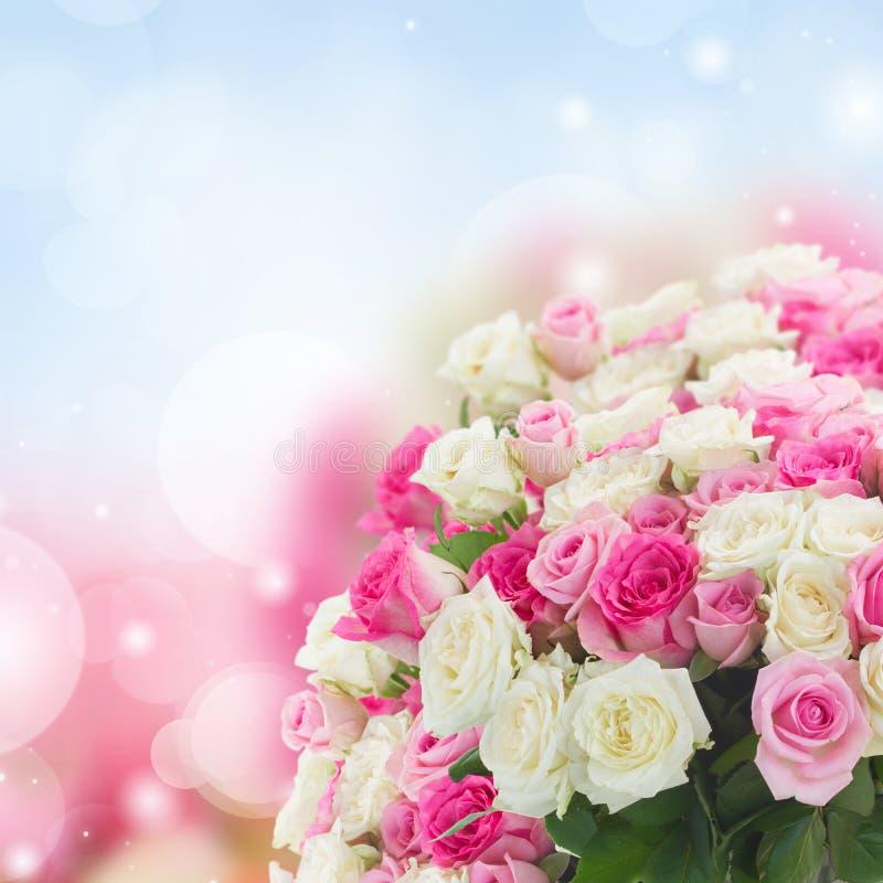 Ramo de rosas frescas fotos de archivo