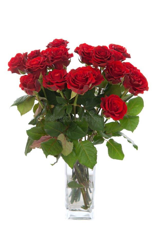 Ramo de rosas rojas en el florero aislado foto de archivo libre de regalías